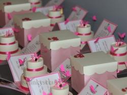 Pink & Creme Sweet 15 Invitations